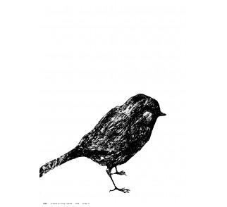 Plakat A3 LITTLE BIRD - Miiko